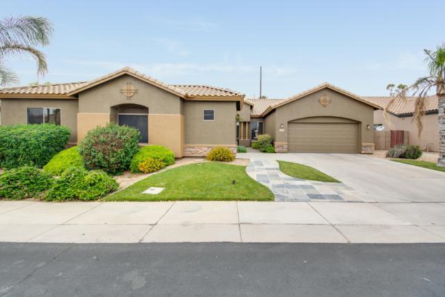 5590 S Eucalyptus Place, Chandler, AZ 85249 (MLS #5922247) :: Arizona 1 Real Estate Team