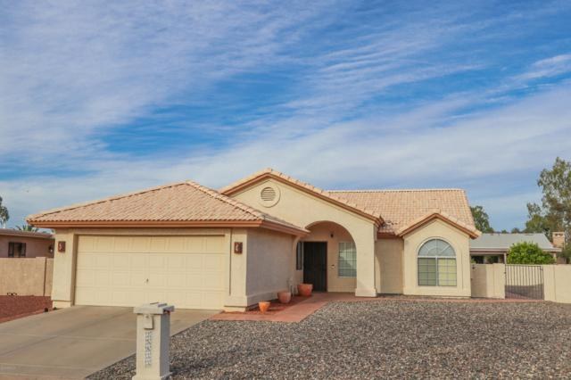 25833 S Hollygreen Drive, Sun Lakes, AZ 85248 (MLS #5922259) :: The W Group