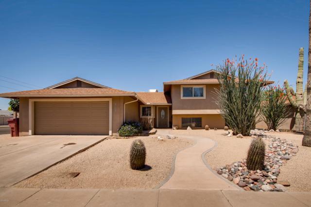 8602 E Mitchell Drive, Scottsdale, AZ 85251 (MLS #5922278) :: The Kenny Klaus Team