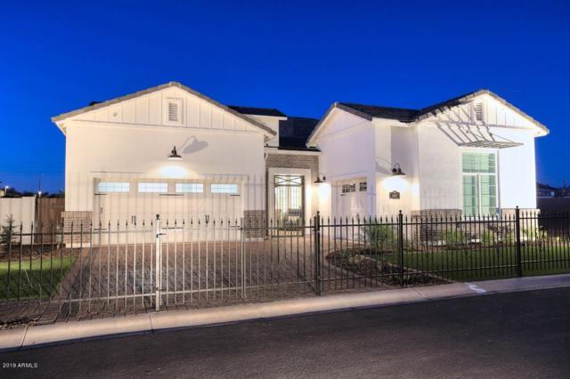 4457 E Fountain Street, Mesa, AZ 85205 (MLS #5922297) :: Arizona 1 Real Estate Team