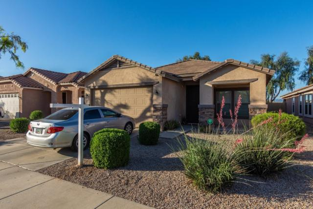 22170 E Via Del Palo, Queen Creek, AZ 85142 (MLS #5922301) :: Arizona 1 Real Estate Team
