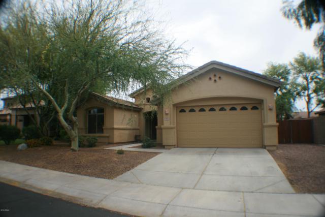 3667 S Newport Street, Chandler, AZ 85286 (MLS #5922322) :: The Daniel Montez Real Estate Group
