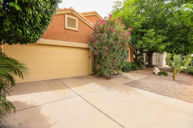 7327 E Lomita Avenue, Mesa, AZ 85209 (MLS #5922332) :: The Carin Nguyen Team
