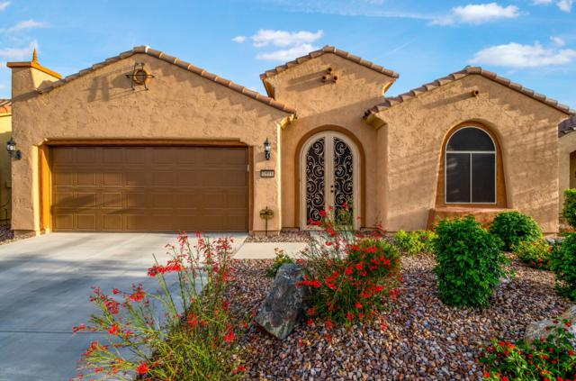 7893 W Silver Spring Way, Florence, AZ 85132 (MLS #5922340) :: The Everest Team at My Home Group