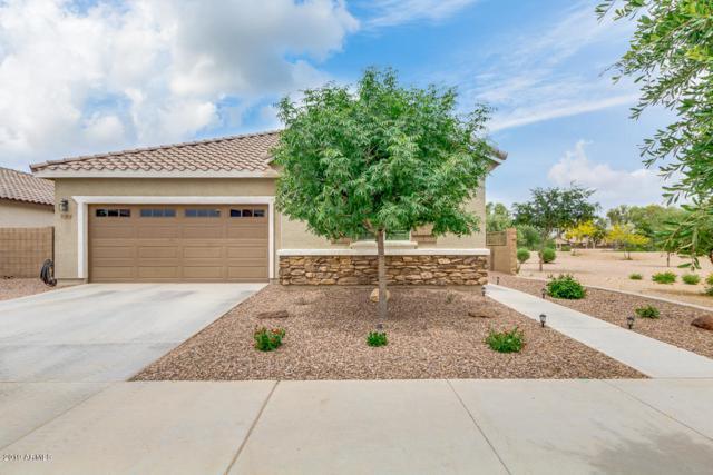 21268 E Calle Luna, Queen Creek, AZ 85142 (MLS #5922346) :: Kepple Real Estate Group