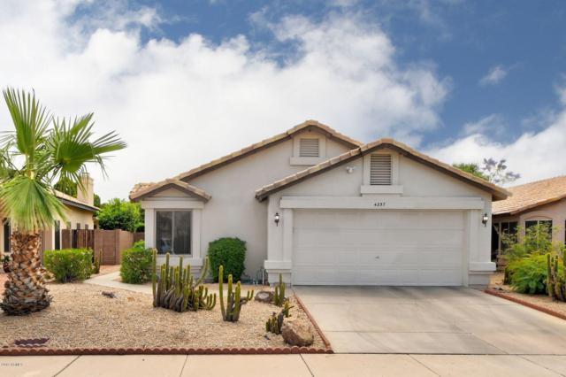4257 E Rosemonte Drive, Phoenix, AZ 85050 (MLS #5922390) :: CC & Co. Real Estate Team