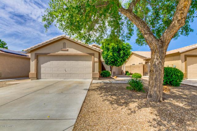 9286 W Potter Drive, Peoria, AZ 85382 (MLS #5922404) :: The Results Group