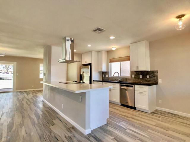 1365 Leisure World, Mesa, AZ 85206 (MLS #5922441) :: CC & Co. Real Estate Team