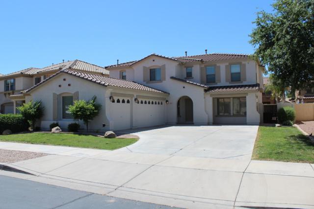 19667 E Reins Road, Queen Creek, AZ 85142 (MLS #5922485) :: Revelation Real Estate