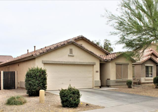 45560 W Tulip Lane, Maricopa, AZ 85139 (MLS #5922516) :: The W Group