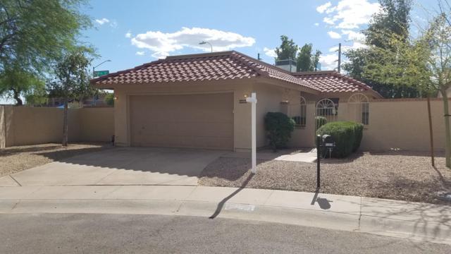 13030 S 44TH Place, Phoenix, AZ 85044 (MLS #5922520) :: Relevate | Phoenix