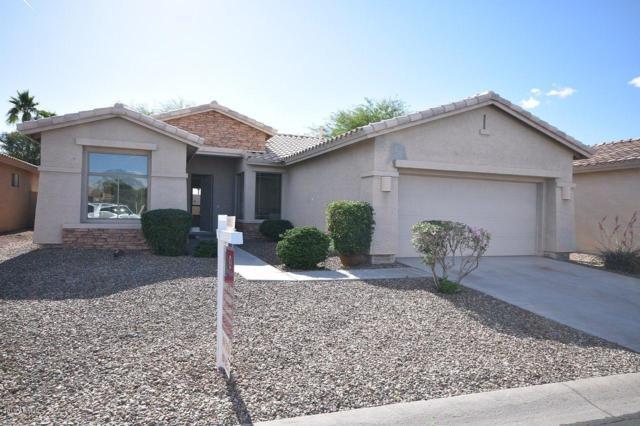 25030 S Mohawk Drive, Sun Lakes, AZ 85248 (MLS #5922531) :: CC & Co. Real Estate Team