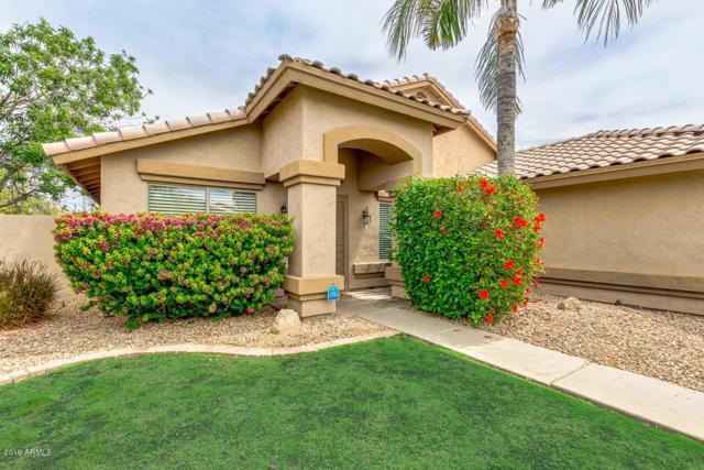 1878 E Aspen Way, Gilbert, AZ 85234 (MLS #5922545) :: CC & Co. Real Estate Team