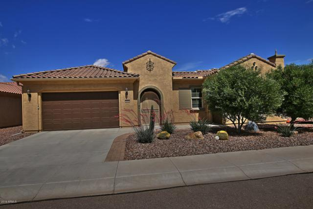 4002 N Monticello Drive, Florence, AZ 85132 (MLS #5922581) :: The Everest Team at My Home Group
