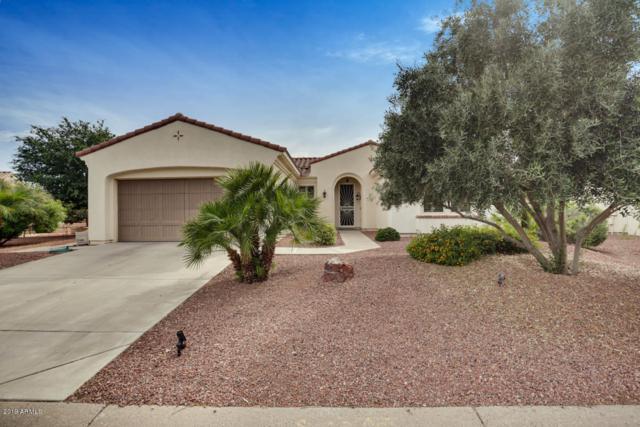 13429 W Micheltorena Drive, Sun City West, AZ 85375 (MLS #5922583) :: Devor Real Estate Associates