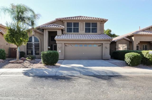 9635 E Sheena Drive, Scottsdale, AZ 85260 (MLS #5922610) :: Realty Executives