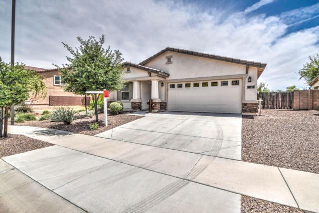 17713 W Red Bird Road, Surprise, AZ 85387 (MLS #5922625) :: CC & Co. Real Estate Team