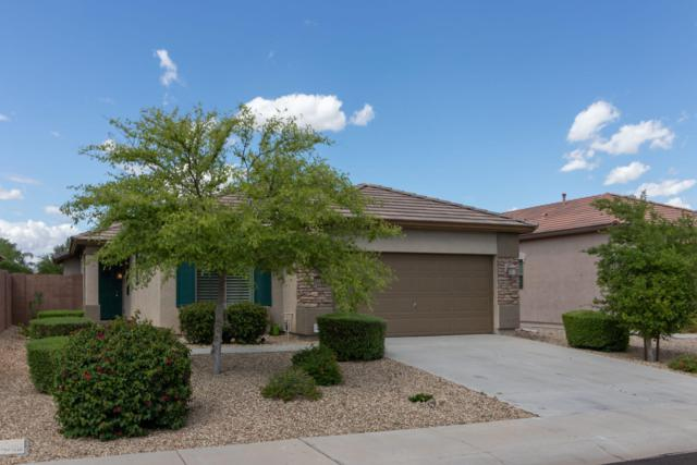 17950 W Purdue Avenue, Waddell, AZ 85355 (MLS #5922647) :: CC & Co. Real Estate Team