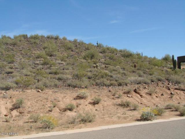 24221 N 65TH Avenue, Glendale, AZ 85310 (MLS #5922653) :: CC & Co. Real Estate Team