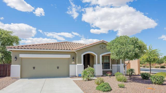 16038 W Tohono Drive, Goodyear, AZ 85338 (MLS #5922661) :: CC & Co. Real Estate Team