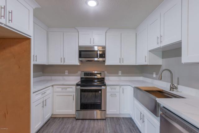 3261 E Crescent Avenue, Mesa, AZ 85204 (MLS #5922664) :: CC & Co. Real Estate Team