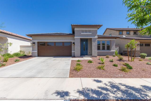 20492 W Alsap Road, Buckeye, AZ 85396 (MLS #5922695) :: Riddle Realty