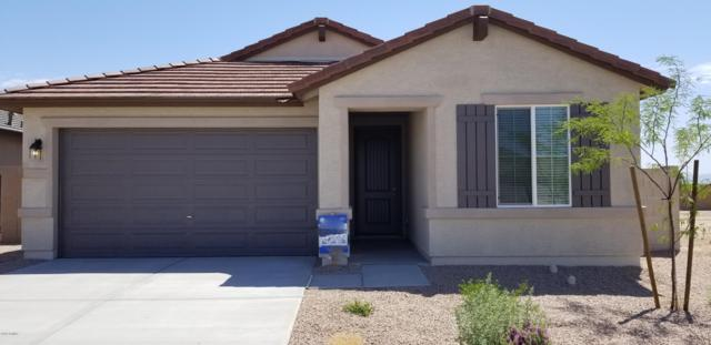 24750 W Wayland Drive, Buckeye, AZ 85326 (MLS #5922772) :: CC & Co. Real Estate Team