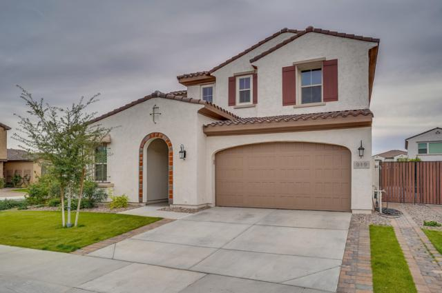 919 W Yellowstone Way, Chandler, AZ 85248 (MLS #5922790) :: The Daniel Montez Real Estate Group