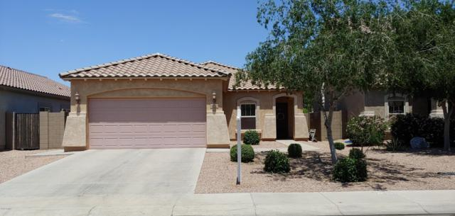 42954 W Kendra Way, Maricopa, AZ 85138 (MLS #5922802) :: The Everest Team at My Home Group