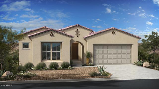 231 E Pasaro Drive, Phoenix, AZ 85085 (MLS #5922918) :: The Kenny Klaus Team