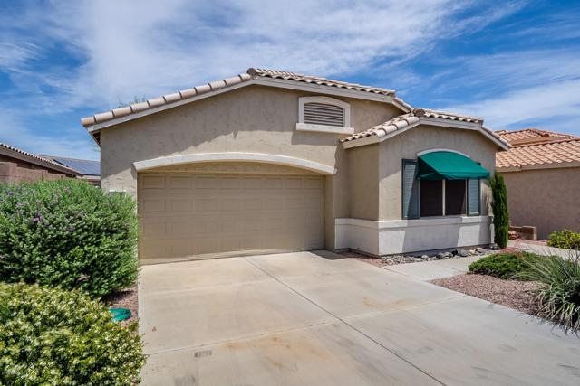 17666 W Wildberry Drive, Surprise, AZ 85374 (MLS #5922948) :: The Daniel Montez Real Estate Group