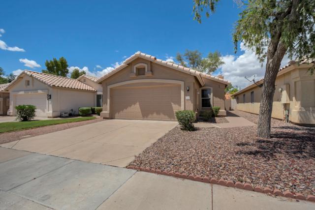 648 N Rita Lane, Chandler, AZ 85226 (MLS #5923067) :: Openshaw Real Estate Group in partnership with The Jesse Herfel Real Estate Group