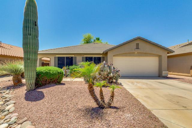 481 E Clairidge Drive, San Tan Valley, AZ 85143 (MLS #5923117) :: Riddle Realty