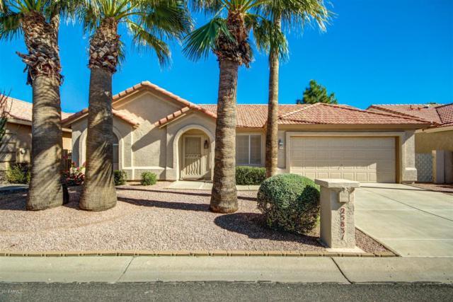 25831 S Flame Tree Drive, Sun Lakes, AZ 85248 (MLS #5923202) :: CC & Co. Real Estate Team