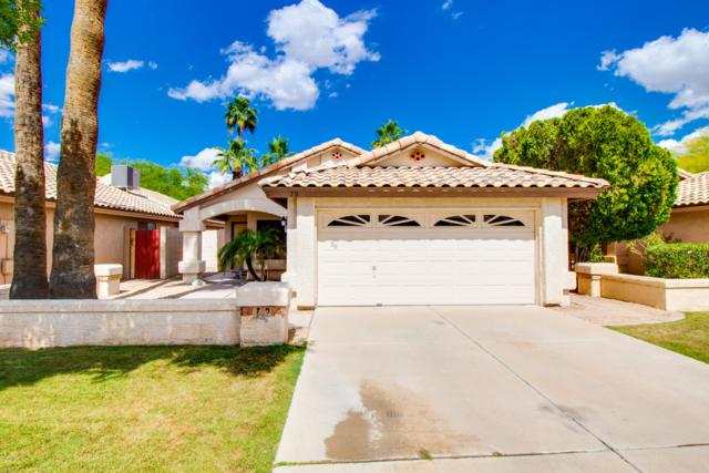 79 S Sunflower Court, Chandler, AZ 85226 (MLS #5923219) :: CC & Co. Real Estate Team