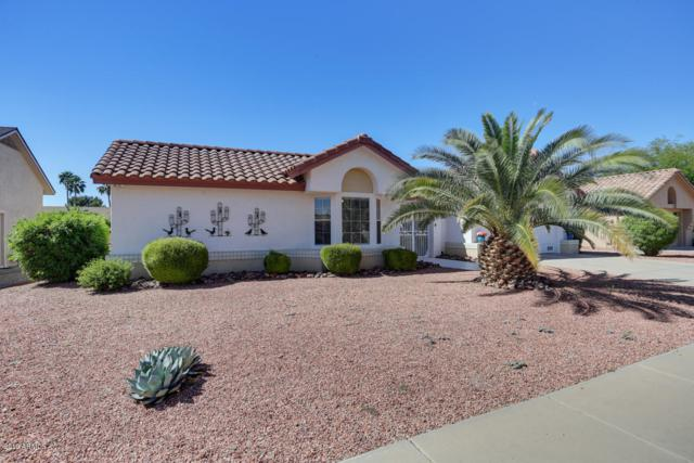 13549 W Pavillion Drive, Sun City West, AZ 85375 (MLS #5923253) :: Riddle Realty