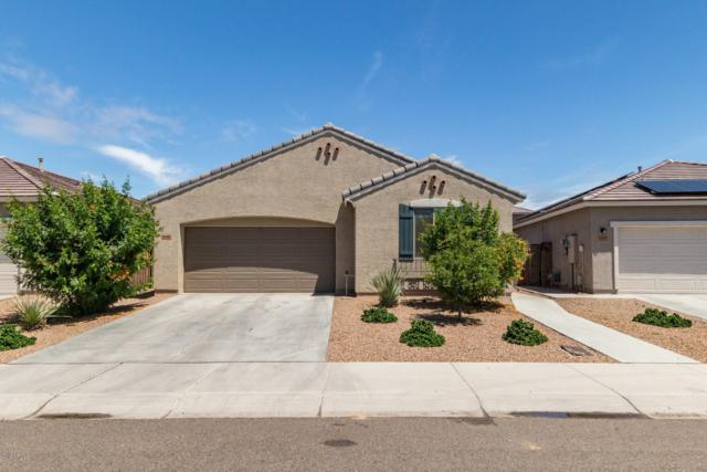 12112 W Tether Trail, Peoria, AZ 85383 (MLS #5923255) :: The W Group