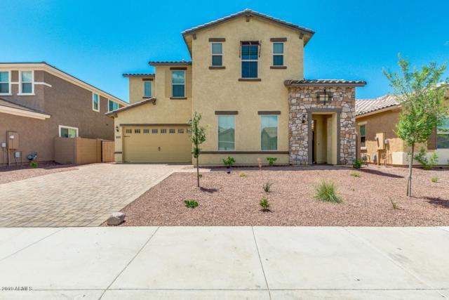 10275 W Fetlock Trail, Peoria, AZ 85383 (MLS #5923261) :: Howe Realty