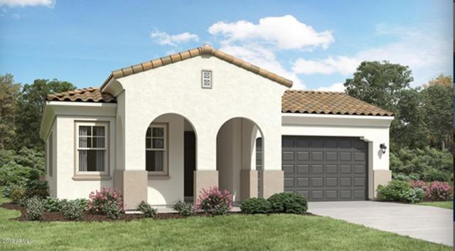 12564 E Crystal Forest, Gold Canyon, AZ 85118 (MLS #5923286) :: The Kenny Klaus Team