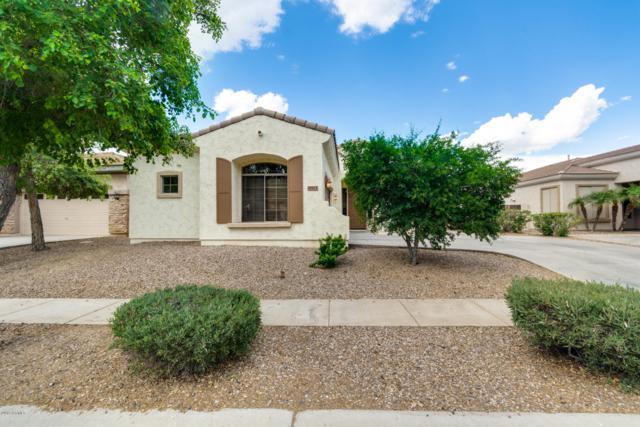 4555 S Maverick Court, Gilbert, AZ 85297 (MLS #5923314) :: CC & Co. Real Estate Team
