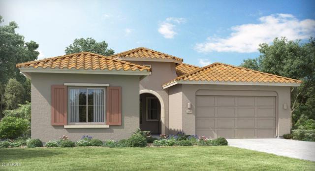 173 S 197TH Drive, Buckeye, AZ 85326 (MLS #5923348) :: CC & Co. Real Estate Team