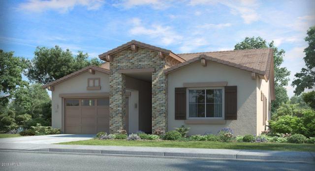 137 S 197TH Drive, Buckeye, AZ 85326 (MLS #5923352) :: CC & Co. Real Estate Team