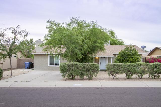 4940 W Michigan Avenue, Glendale, AZ 85308 (MLS #5923353) :: CC & Co. Real Estate Team