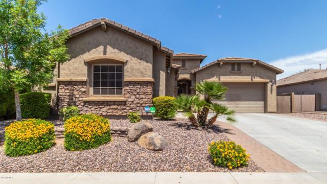5542 W Desperado Way, Phoenix, AZ 85083 (MLS #5923369) :: Riddle Realty