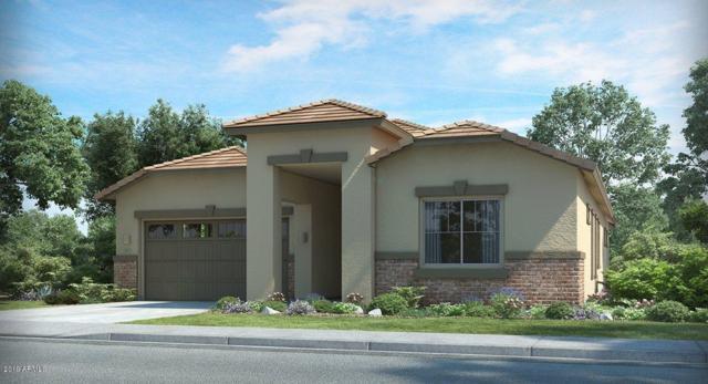 16454 W Calle Lejos Lane, Surprise, AZ 85387 (MLS #5923381) :: CC & Co. Real Estate Team