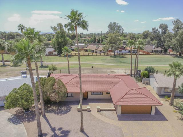 916 S Saranac Avenue, Mesa, AZ 85208 (MLS #5923383) :: Conway Real Estate