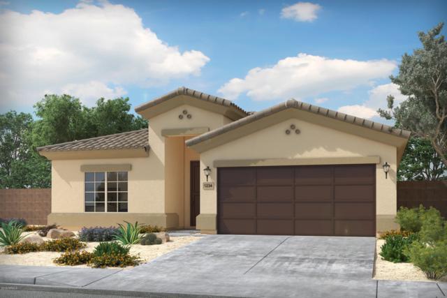 42470 W Ramirez Drive, Maricopa, AZ 85138 (MLS #5923396) :: Revelation Real Estate