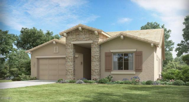 211 S 197TH Lane, Buckeye, AZ 85326 (MLS #5923418) :: CC & Co. Real Estate Team