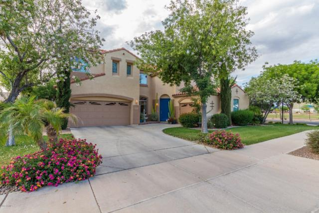 18548 E Purple Sage Drive, Queen Creek, AZ 85142 (MLS #5923445) :: CC & Co. Real Estate Team