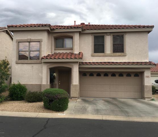 648 E Springfield Place, Chandler, AZ 85286 (MLS #5923466) :: CC & Co. Real Estate Team